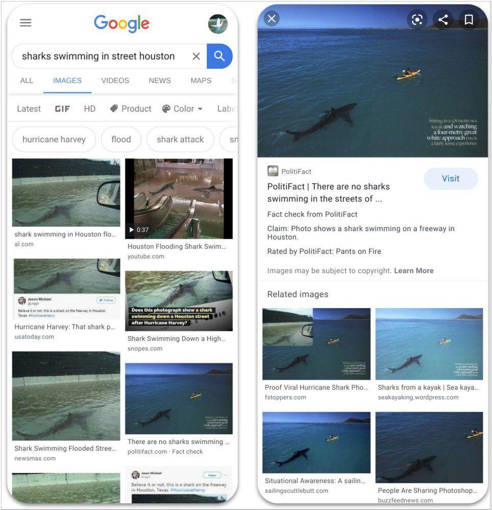 """В Google Images добавлена метка «Fact Check» для изображений из """"авторитетных источников"""""""